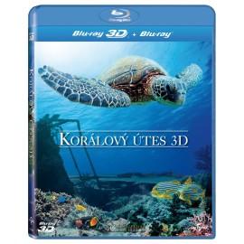 Korálový útes 3D / Coral Reef 3D [2012]