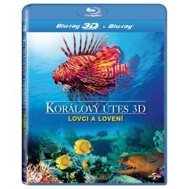 Korálový útes 3D – Lovci a lovení / Coral Reef 3D – Hunters and Hunted [2012]